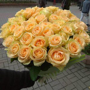 51 кремовая роза в Мариуполе фото