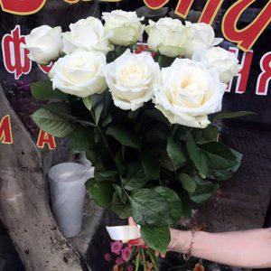 11 белых роз в Мариуполе фото