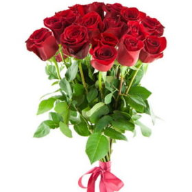 15 голландских роз фото