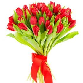 25_красных тюльпанов фото