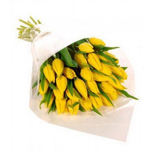 25 желтых тюльпанов фото
