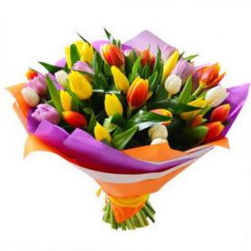 49 тюльпанов в мариуполе