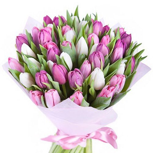 49 тюльпанов фото
