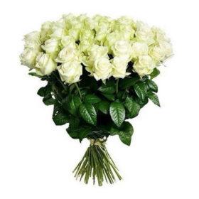 51 белая роза букет