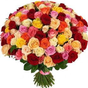 101 роза букет микс фото