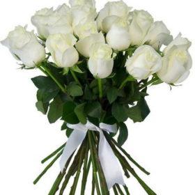 21 белая роза фото