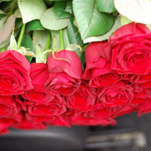 розы с доставкой мариуполь