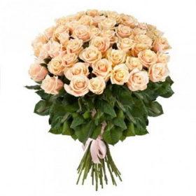 51 кремовая роза фото