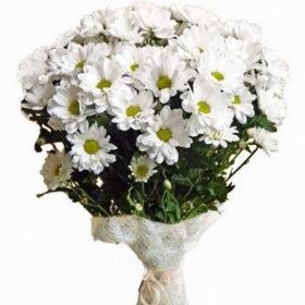 фото букет очаровашка хризантемы