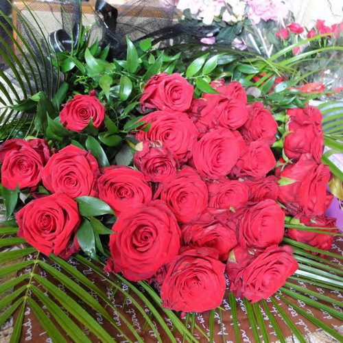 красные розы в мариуполе