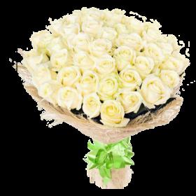 акция 51 белая роза