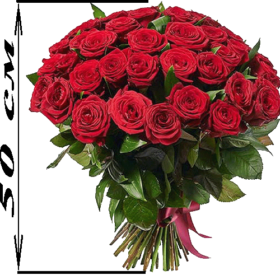 акция 51 красная роза