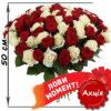 Фото товара 101 роза микс красная и белая (50 см)