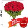 Фото товара 51 красная роза (50см)