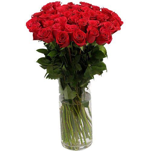 Фото товара Роза импортная красная (поштучно)