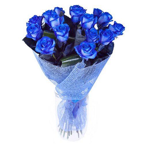 Фото товара 17 синих роз (крашеных)