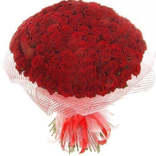 Фото товара 201 красная роза