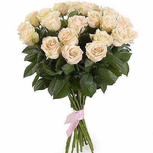 Фото товара 21 кремовая роза