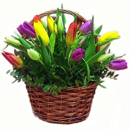 Фото товара 15 тюльпанов в корзине