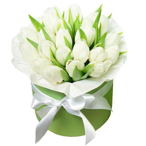Фото товара 21 белый тюльпан в коробке