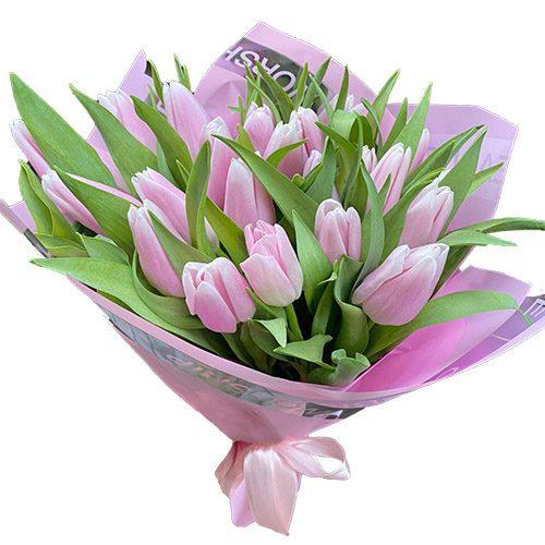 Фото товара 21 нежно-розовый тюльпан