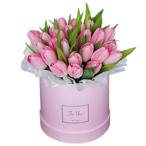 Фото товара 31 нежно-розовый тюльпан в коробке