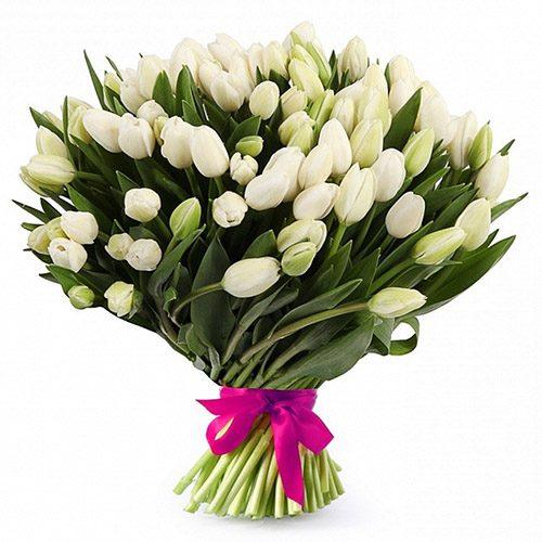 "Фото товара 51 белый тюльпан ""Джульетта"""