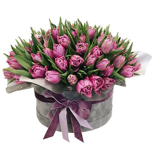 Фото товара 101 пурпурный тюльпан в коробке