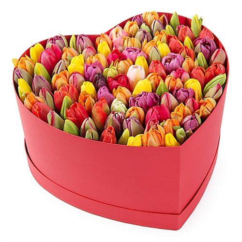 Фото товара 101 тюльпан в коробке сердцем